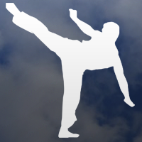 category: martial arts decals
